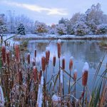 Early Fall Snowfall: snow deocarates the autumn landscape.